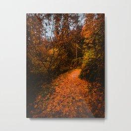 Autumn Arboretum Metal Print