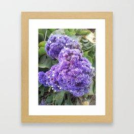 Purple Fluff Framed Art Print