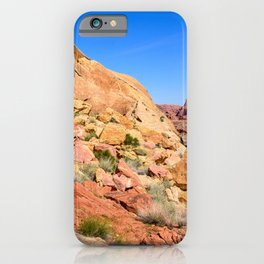 Coat-of-Many-Colors 0906 - Valley of Fire State Park, Nevada iPhone Case