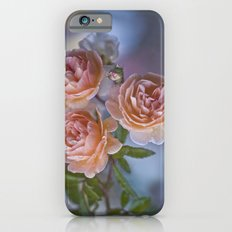 Bounteousness Slim Case iPhone 6s