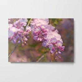 Puple Wisteria, Spring Wildflowers Metal Print