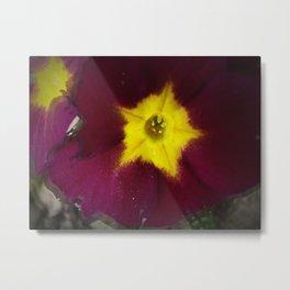 pin hole flower Metal Print