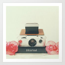 Polaroid Memories Art Print