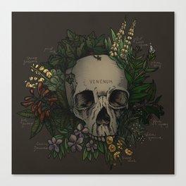 VENENUM Canvas Print