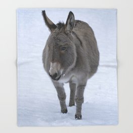 Donkey In The Snow Throw Blanket