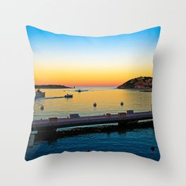 # 243 Throw Pillow