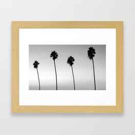 Black and White San Diego Palms - California Framed Art Print