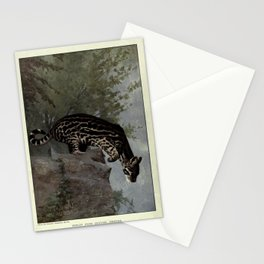 C.J. Cornish - The Living Animals of the World: Mammals (1906) - An Ocelot from Central America Stationery Cards