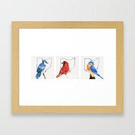 Birds of Ohio Framed Art Print