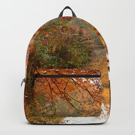 Autumn 17 Backpack
