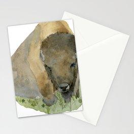 Buffalo Stationery Cards