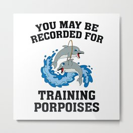 Training Porpoises Metal Print