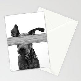 Dog Crosses Line Stationery Cards
