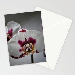 Triplets Stationery Cards