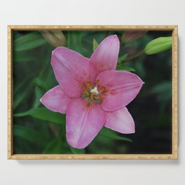 Pink Lily Serving Tray