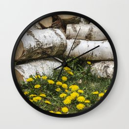 Dead Birch Tree And Living Dandelion Wall Clock