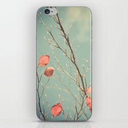 The Winter Days of Autumn iPhone Skin