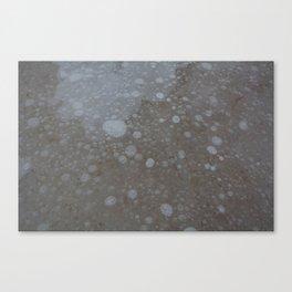 frozen bubbles Canvas Print