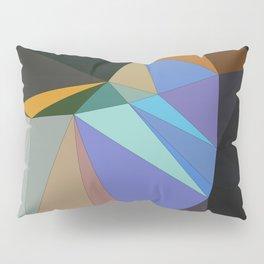 Go Figure Pillow Sham