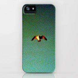 Flite iPhone Case