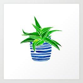 Succulent (green/blue) Art Print