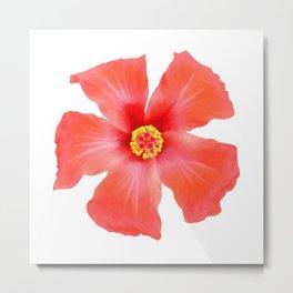 Tropical Hibiscus Flower Vector Metal Print