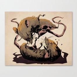 rat fight Canvas Print