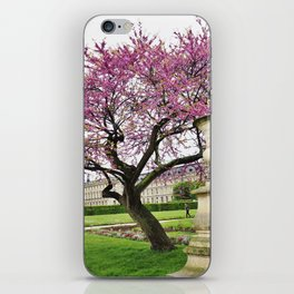 Spring in Paris iPhone Skin