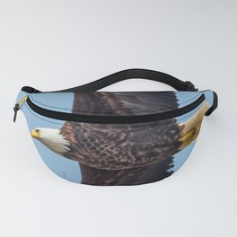 Soaring Bald Eagle in May Fanny Pack