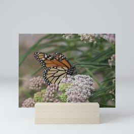 Majestic Monarch Mini Art Print