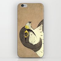 falcon iPhone & iPod Skins featuring Falcon by Lynette Sherrard Illustration and Design