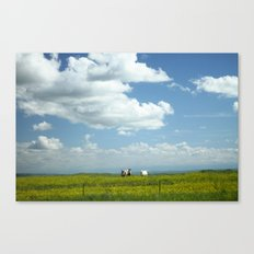 Somewhere In Montana Canvas Print
