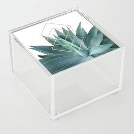 Agave geometrics Acrylic Box