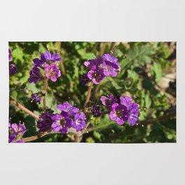 Notch-Leaved Phacelia - Desert Wildflower Rug