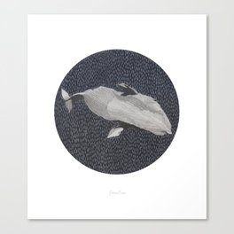Cachalot Canvas Print