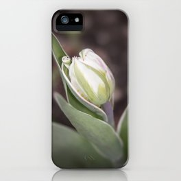 Young Tulip iPhone Case