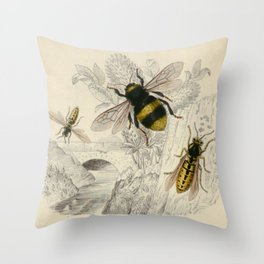 Naturalist Bee And Wasps Throw Pillow
