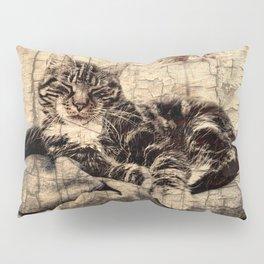 most phanastic tomcat ever Pillow Sham