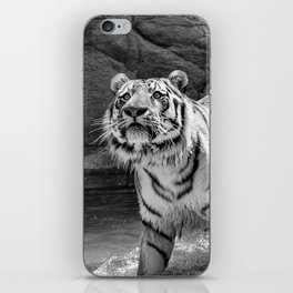 Tiger Photography | Animal | Wildlife | Big Cat | Feline | Mammal | Art iPhone Skin