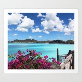 Caribbean Views Art Print
