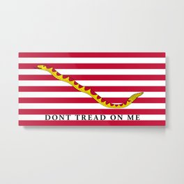 First Navy Jack of the United States of America flag Metal Print