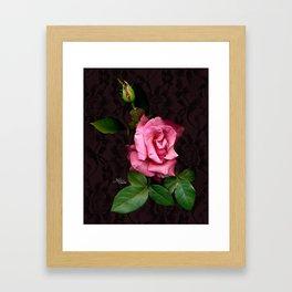 Pink Rose on Black Lace, Scanography Framed Art Print
