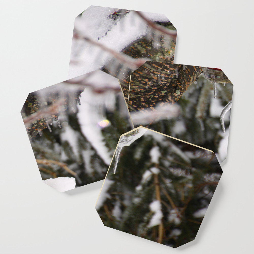 Cardinal Bird House In The Snow Coasters by Pattimelfi (S6C9764659) photo