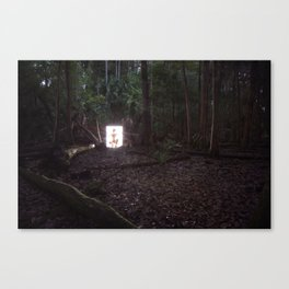 From The Woods Canvas Print