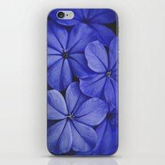 Purple/Blue iPhone & iPod Skin