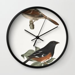 95 The Golden-crested Kinglet (Regulus satrapa) 96 The Winter Wren (Troglodytes hyemalis) 97 The Hou Wall Clock