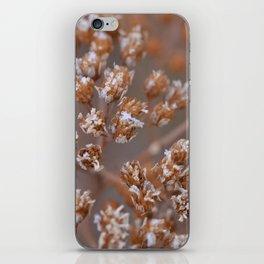 Frozen Yarrow iPhone Skin