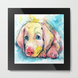 Sweet Blue Eyed Puppy Metal Print