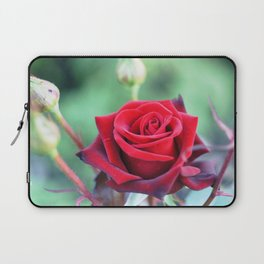Roses on the city flowerbed. Laptop Sleeve