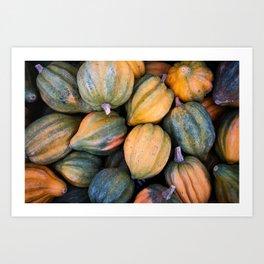 Acorn Squash Art Print